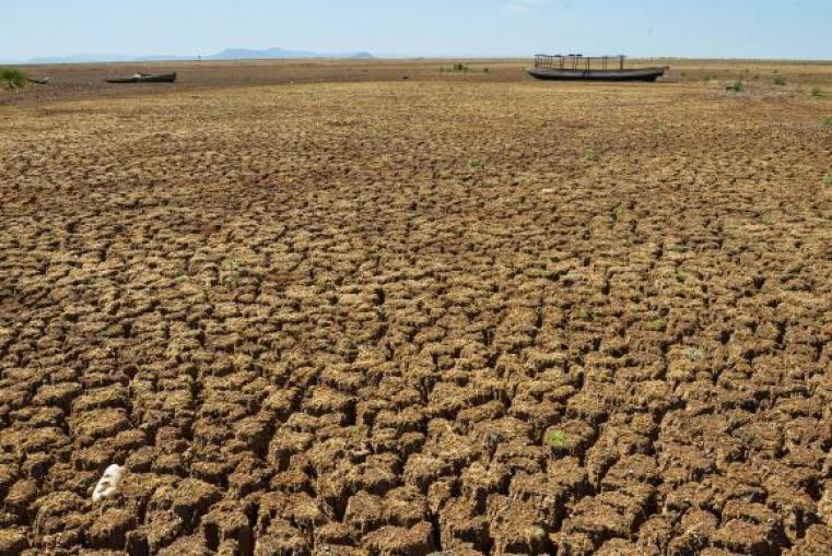 seca seca