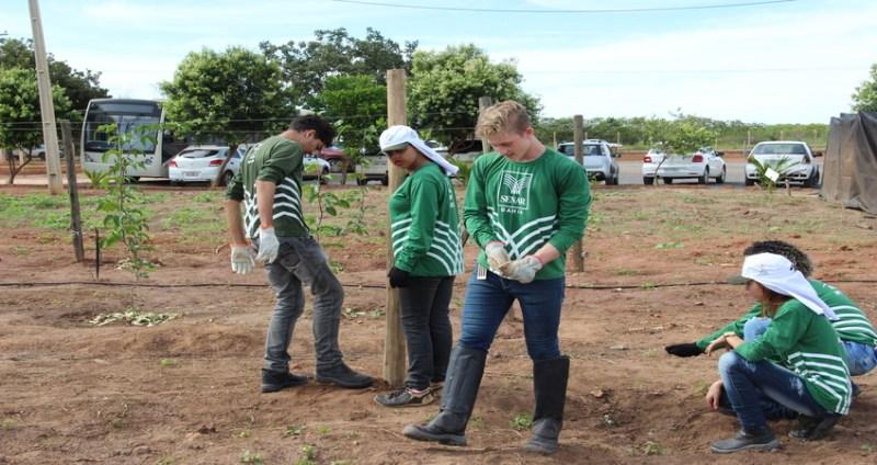 jovem aprendiz rural barreiras