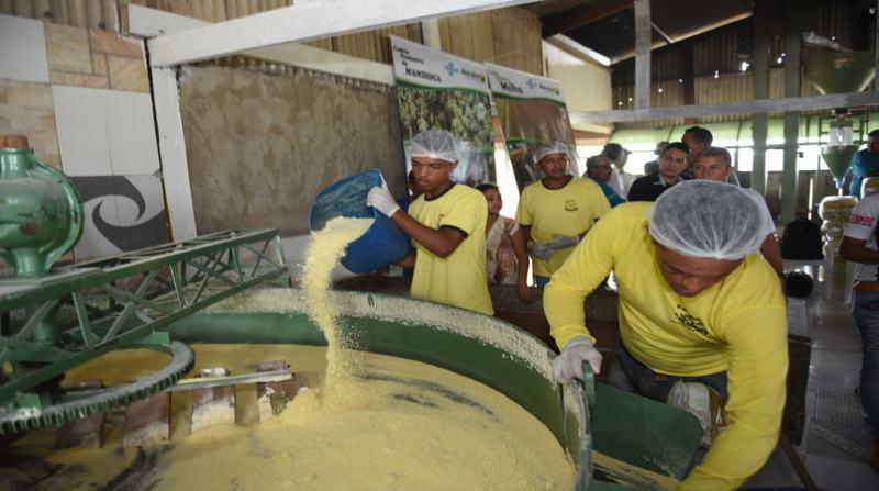 agroindustria farinha