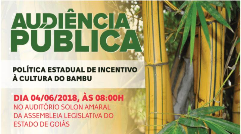 bambu-cartaz-e1527532285729