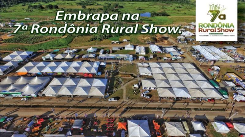 rondonia rural