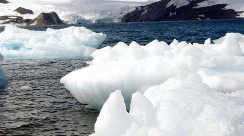 antartica