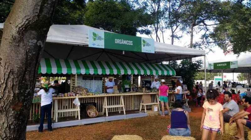 feira organica 14