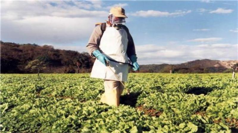 aplicacao agrotoxicos ima arquivo mg