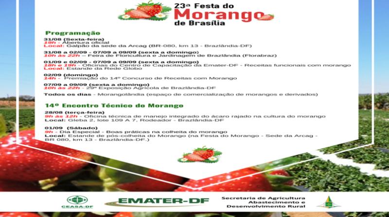 programacao_festamorango