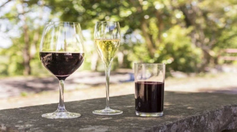 vinho taca ibravin 18