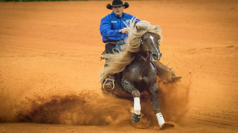 cavalo crioulo f5 licurgo tapajos