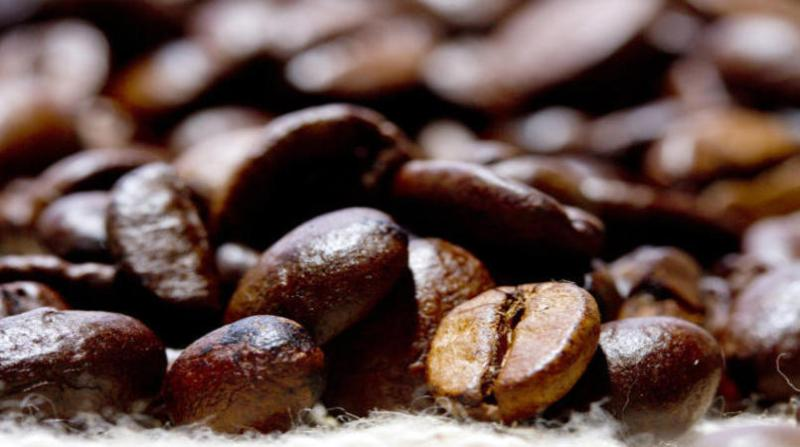 cafe 5 10