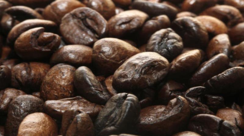 cafe 6 1 19