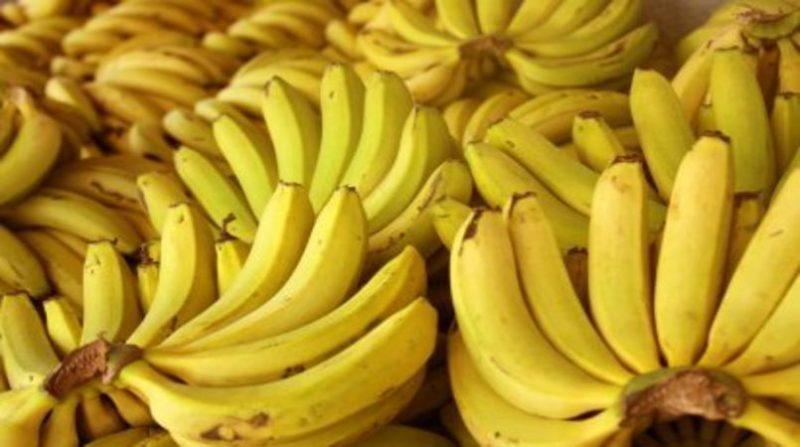 Banana-Nanica-ceagesp