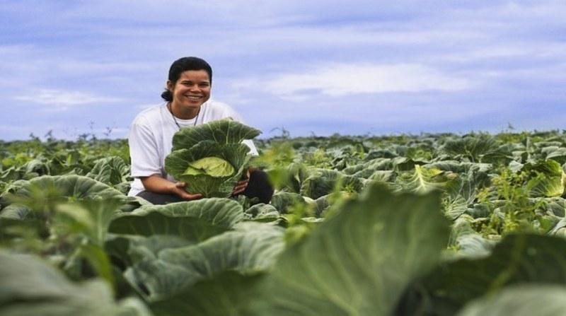mulheres agricultura Albino Oliveira_MDSA