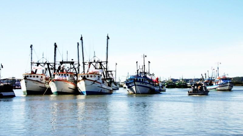 pesca governo de sc 10 4 19
