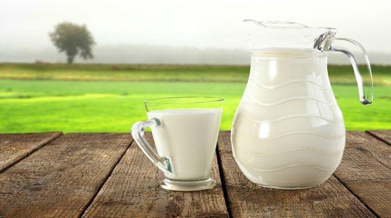 leite mesa gov sc