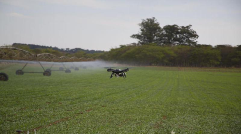 drones lavoura irrigada embrapa
