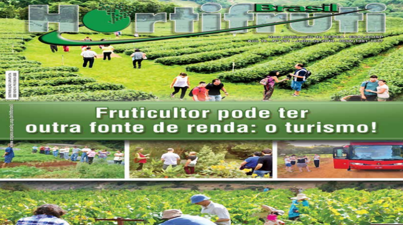 revista hortifruti cepea capa print screen