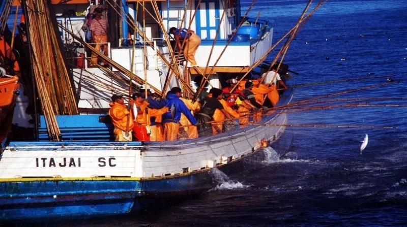pesca embarcacao gov sc