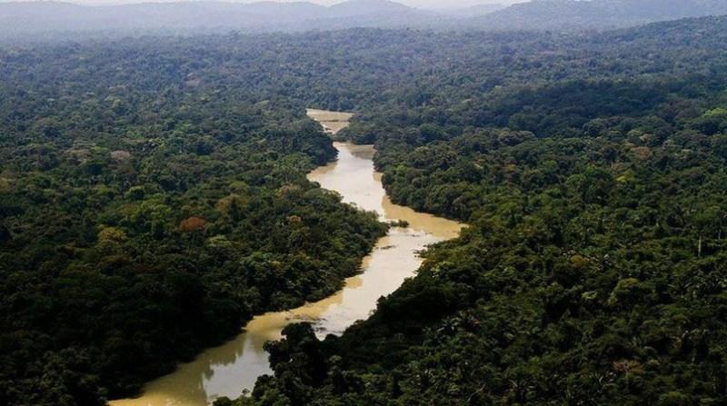 amazonia 0 reserva_florestal_jamanxim_abr