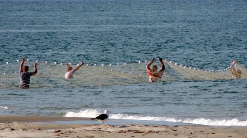 pescadores cidasc governo sc