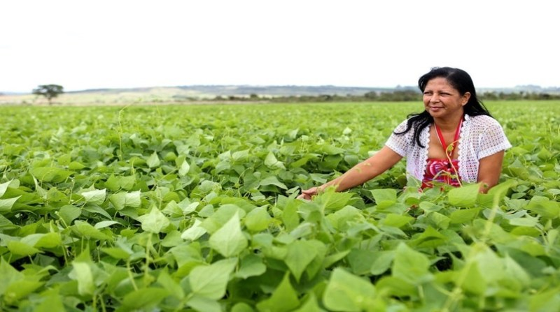 agricultoras censo agencia brasilia