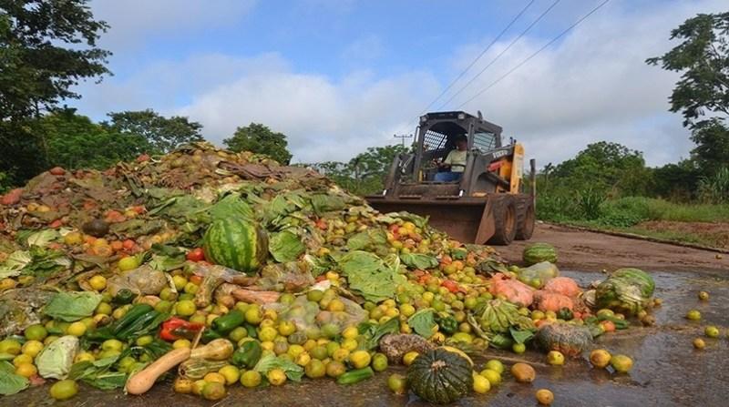 desperdicio de alimentos Divulgação Instituto Cidade Amiga