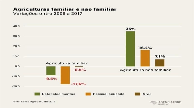 quadro arte AgriculturaFamiliar 1 ibge censo