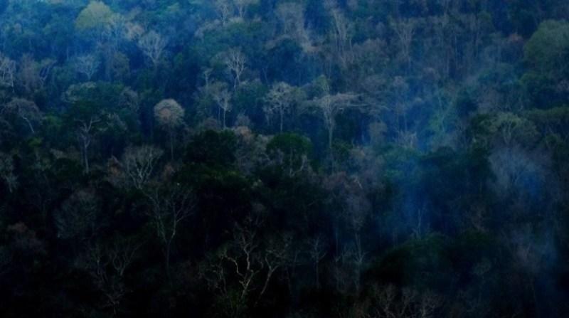 terra indigena arariboia 1 maranhao agencia br