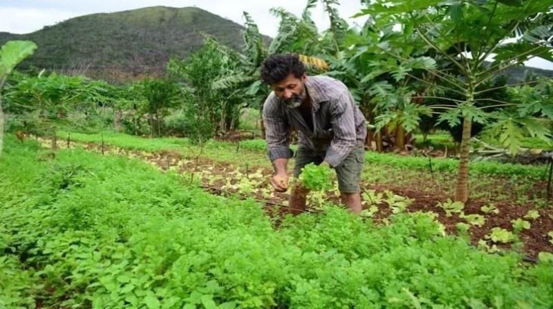 agricultor familiar gov bahia divulgacao