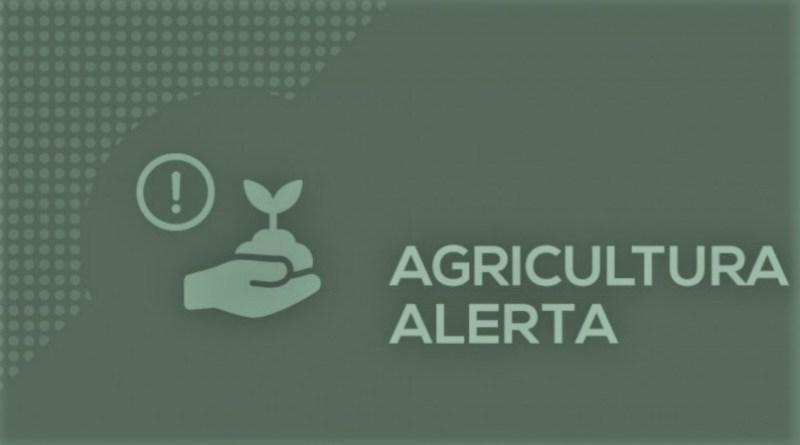 Alerta: Golpistas tentam lesar produtores rurais e prefeituras do interior