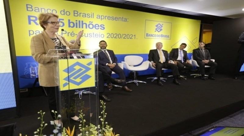 tereza cristina banco do brasil marcel martimon mapa