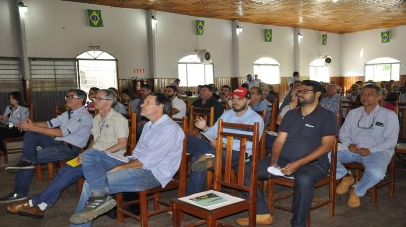 trigo 3 seminário embrapa juliana miura