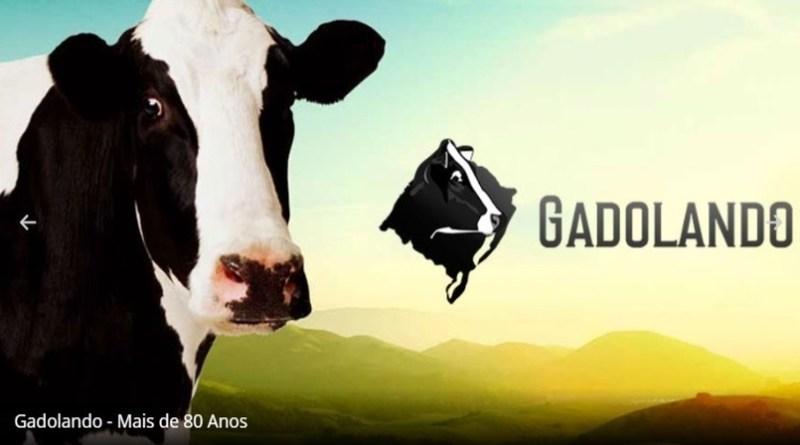 Gadolando: Laticínios garantem esforço para recolher leite dos produtores