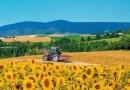 Plano Safra 2020/21 entra em vigor; produtor já pode obter financiamento rural
