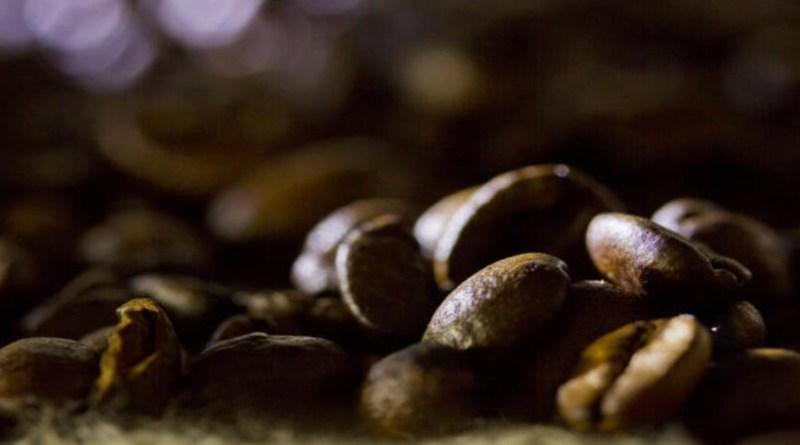 Colheita do café robusta deve ganhar ritmo em breve