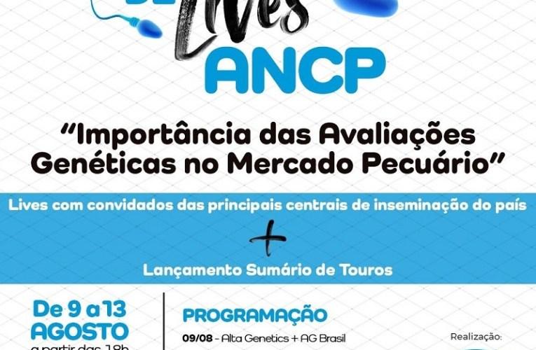 ANCP apresenta programação especial para lançamento de seu sumário de touros