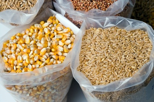 Pragas têm potencial para provocar prejuízos de até R$ 200 bilhões aos cereais durante a armazenagem