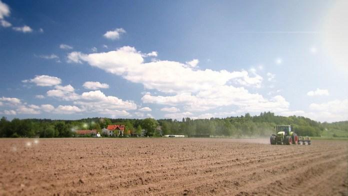 Gleba – spuścizna dla przyszłych pokoleń