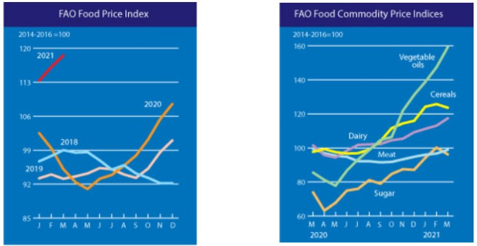 Indeks cen żywności FAO oraz Notowania poszczególnych subindeksów FAO