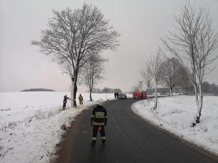 Ponacinali drzewa przy drodze na Kaszubach. Ludzie, ogarnijcie się!!!