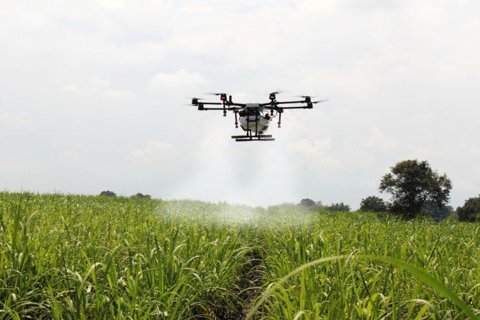 Drony, robotyzacja rolnictwa, cyfrowe uprawy, digital farming