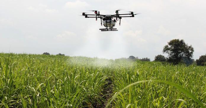 produkcja żywności, wpływ rolnictwa i branży spożywczej na ocieplenie klimatu, hodowla zwierząt, alternatywne systemy produkcji żywności, marnotrawienie jedzenia