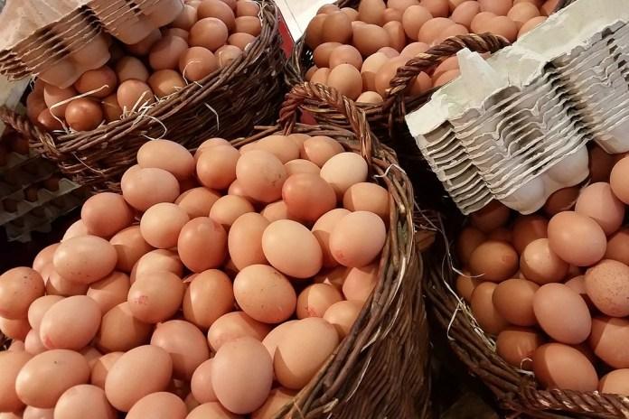 Rośnie popyt na jaja z Europy