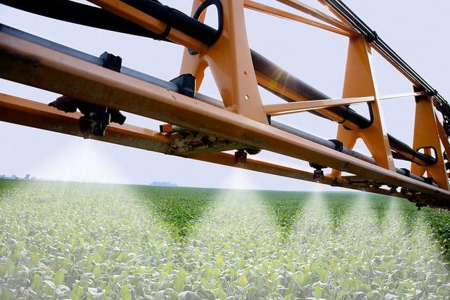 herbicydy, rolnik, chwasty, Uniwersytet Warszawski, zwalczanie chwastów
