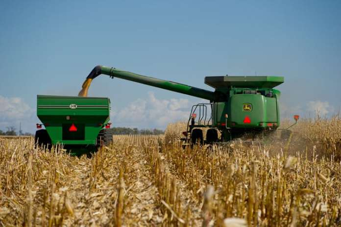 produkcja białka roślinnego, pasze, Komisja Europejska, rośliny wysokobiałkowe, pasze GMO, śruta sojowa, Phil Hogan