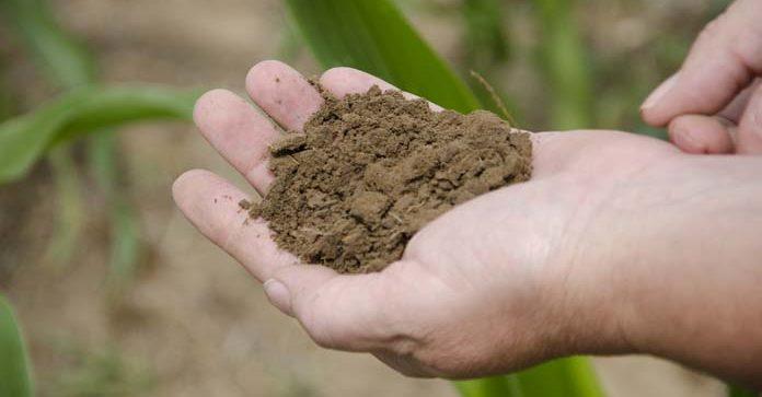 odpady, gleba, struktura gleby