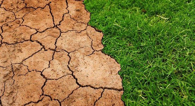 Platformy susza.gov.pl pomoże w walce z suszą