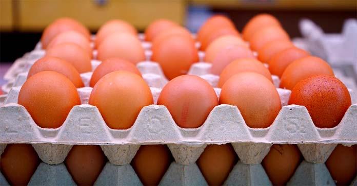 Popyt na jaja spożywcze zaczyna przewyższać ich podaż
