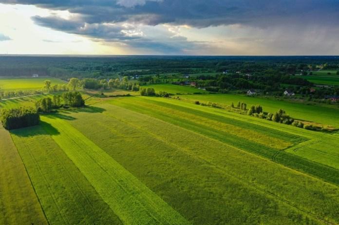 Aktualne ceny gruntów rolnych