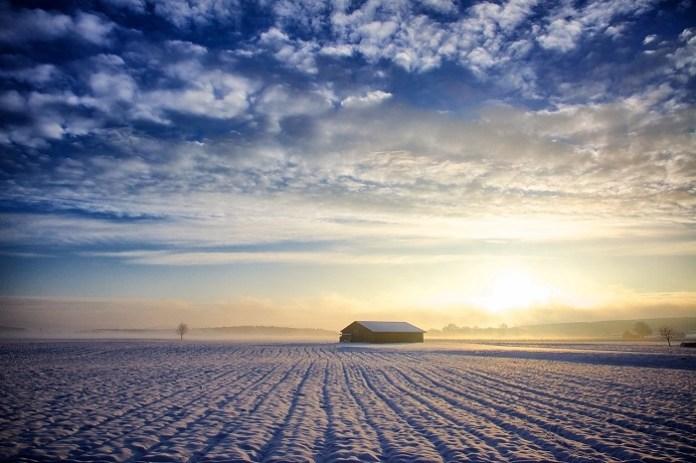 Jak wilgotna jest gleba?