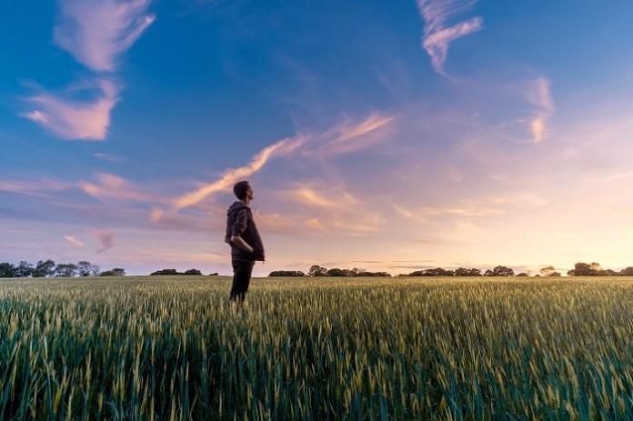 Polska liderem rolnictwa zrównoważonego w Europie