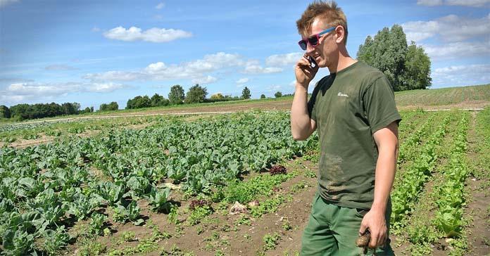 ekorolnictwo, rolnictwo ekologiczne, NIK, rozwój rolnictwa ekologicznego